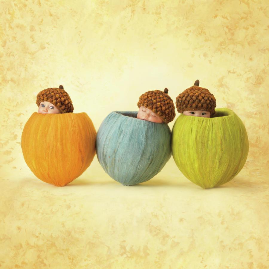 Acorns Photograph - Three Little Acorns by Anne Geddes