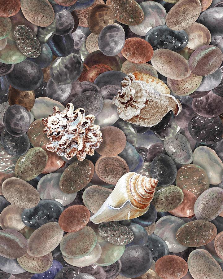Three Seashells On The Beach Rocks Pebbles Watercolor Painting