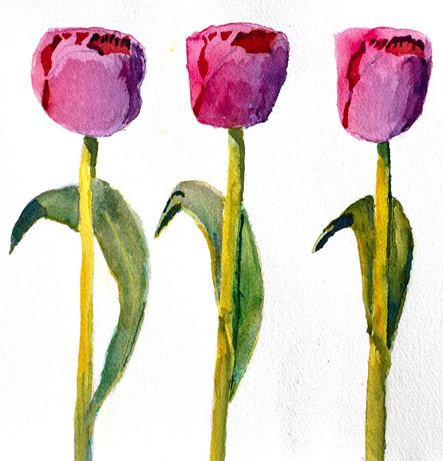Three Tulips by Paul Thompson