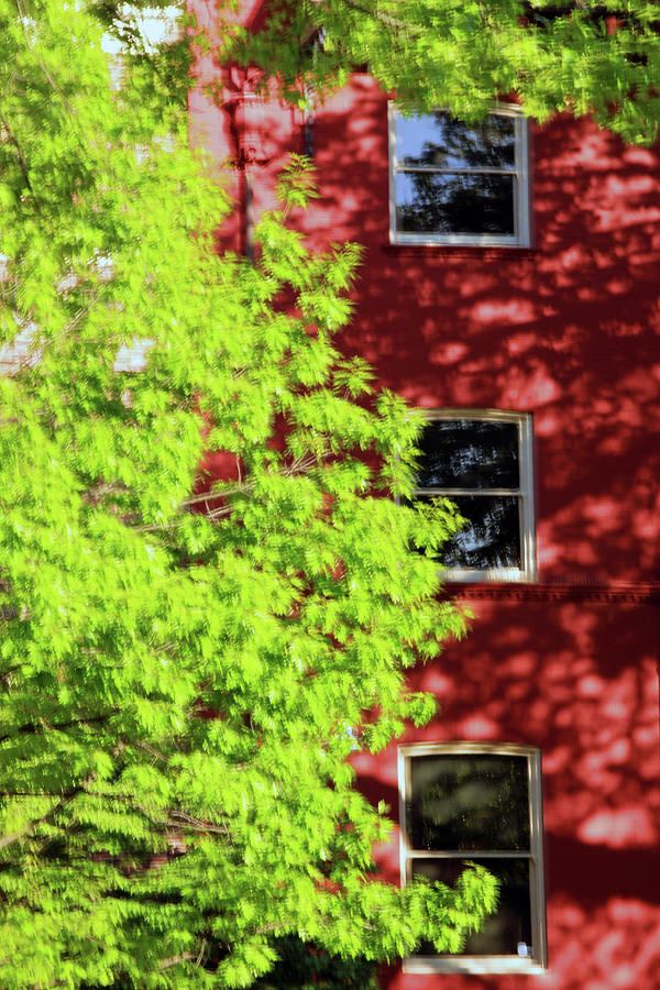 Three Windows Blur Photograph