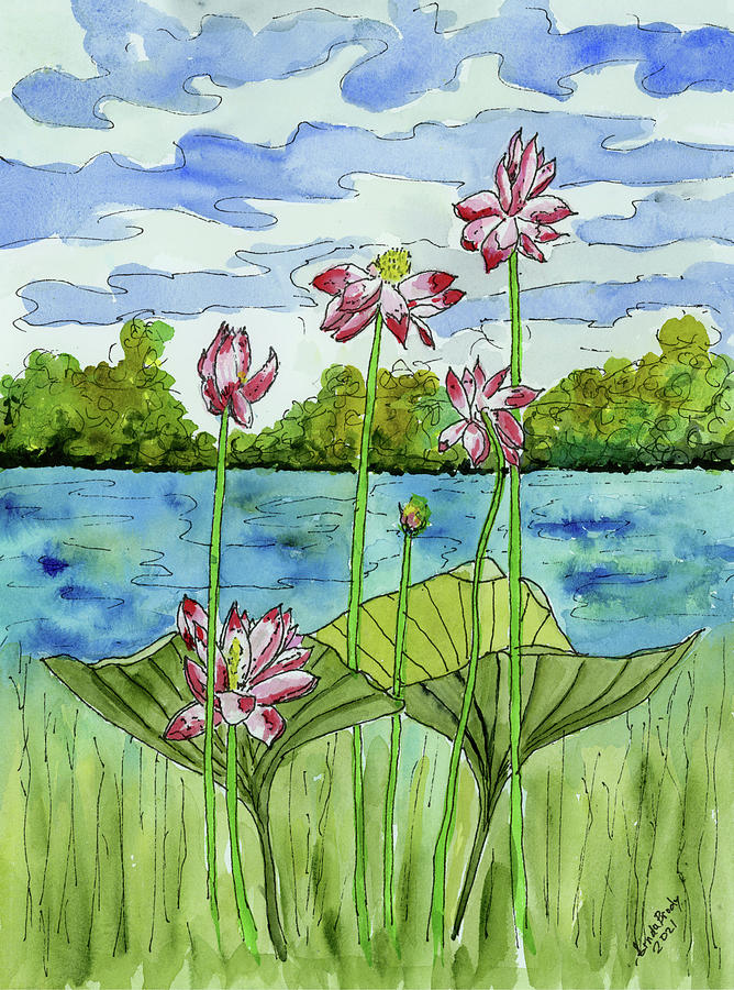 Through The Water Lilies  From The Vantage Point Of A Frog Painting