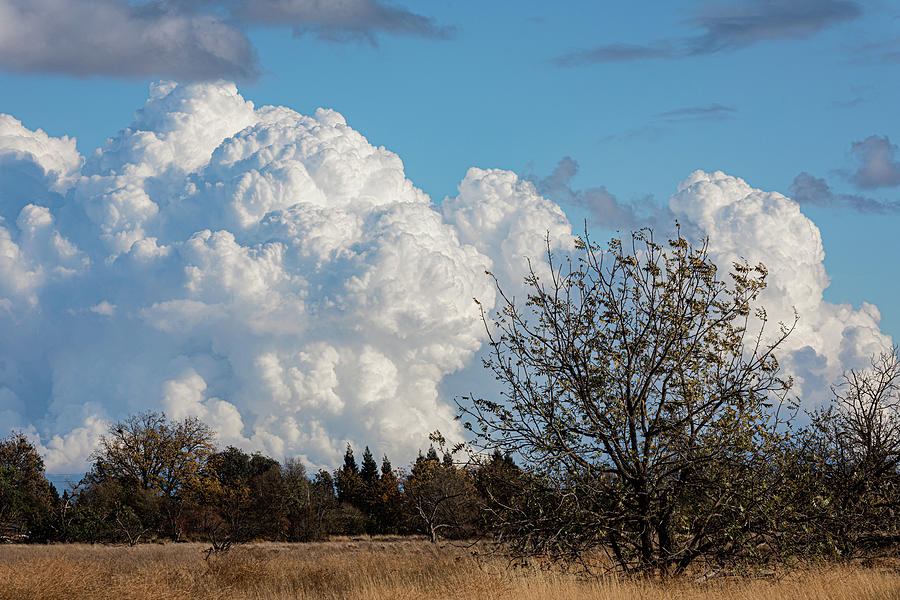 Clouds Photograph - Thunderhead by John Heywood