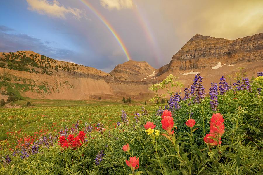 Utah Photograph - Timp Rainbow by Johnny Adolphson