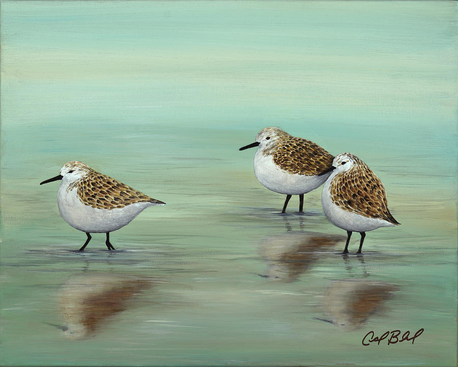 Sandpipers Painting - To the Rhythm of the Shore by Carolyn Bland