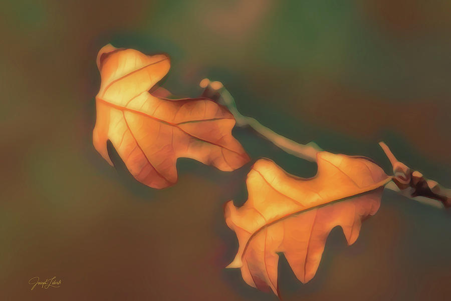 Graceful Digital Art - Together_20210318 by Joseph Liberti