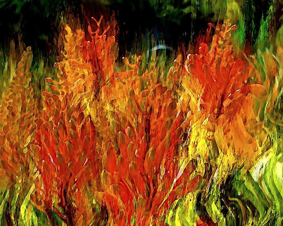 Torch Lillies 2 by David Manlove
