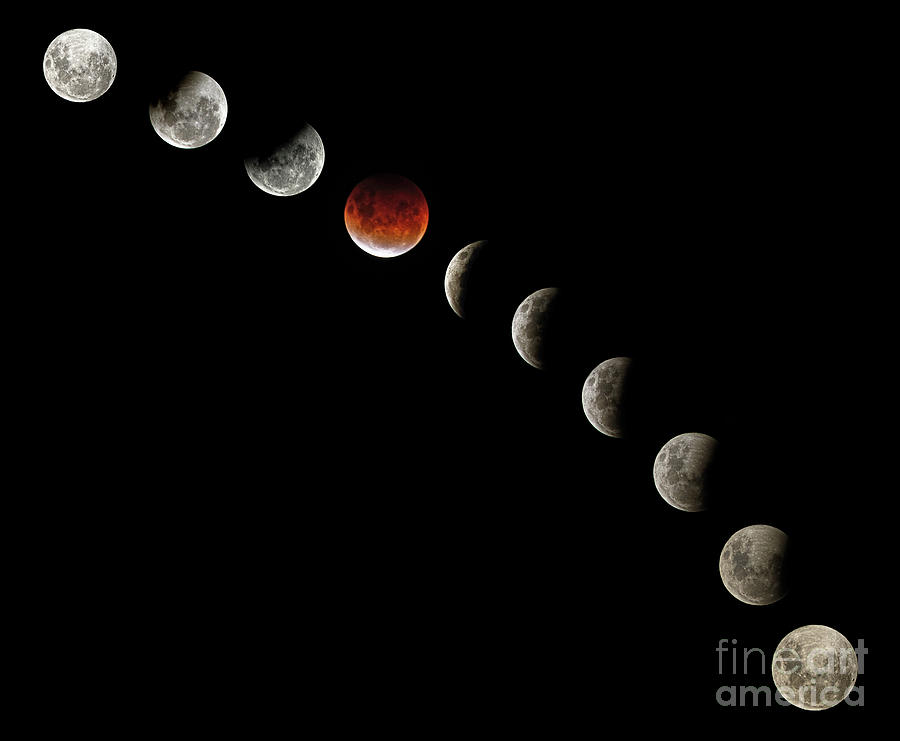 Total Lunar Eclipse Blood Moon Sydney 26may2021 By Kaye Menner Photograph