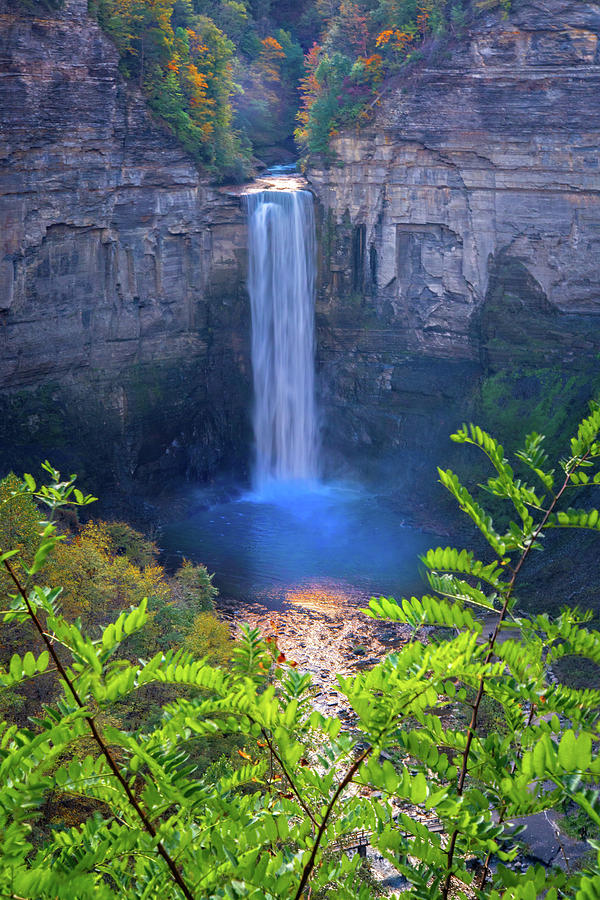 Touched by Autumn at Taughannock Falls  by Lynn Bauer