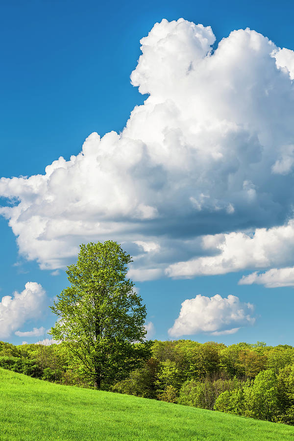 Towering Cloud Landscape Photograph