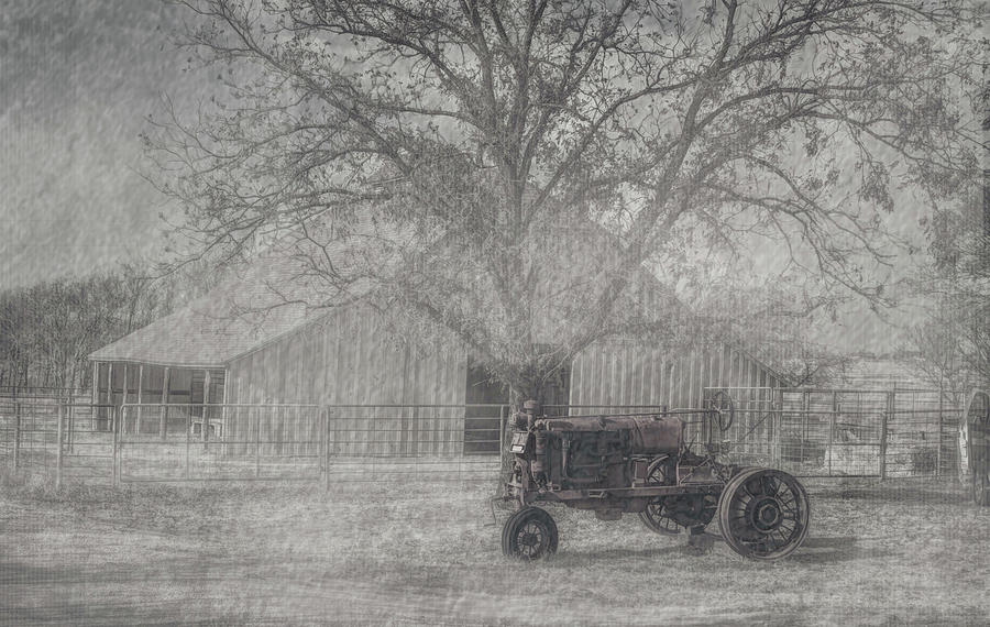International Photograph - Tractor by Peyton Vaughn