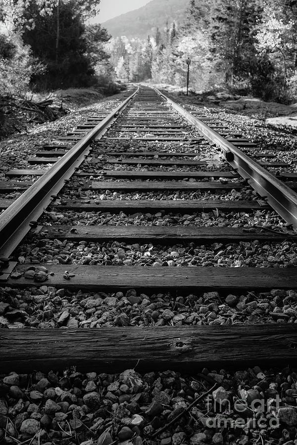 Train Tracks Bretton Woods New Hampshire by Edward Fielding