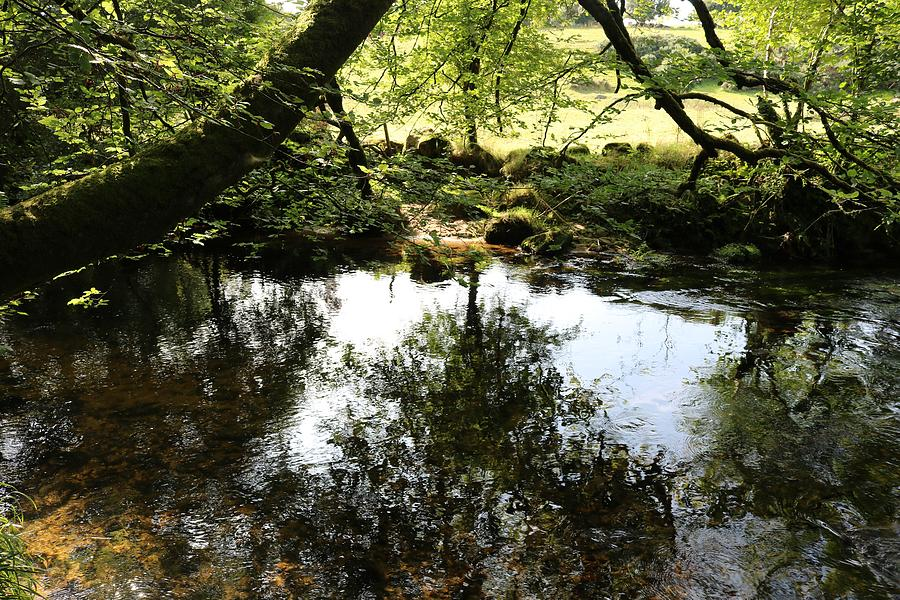 Tranquil River Fowey Photograph