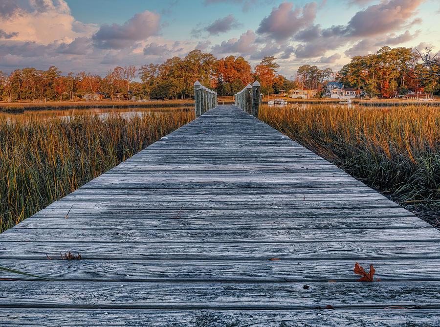 Tranquility Path by David Kay