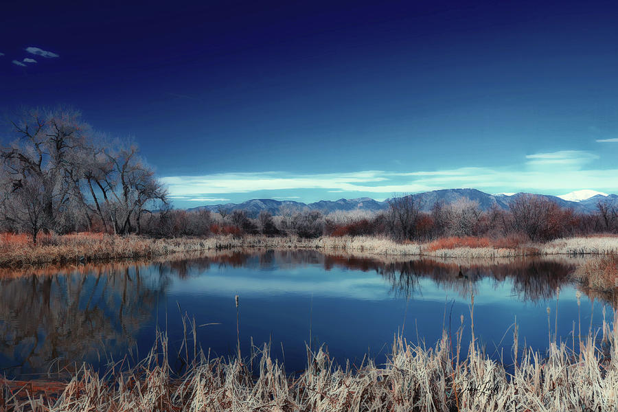 Colorado Digital Art - Tranquil_Marsh_20200328 by Joseph Liberti