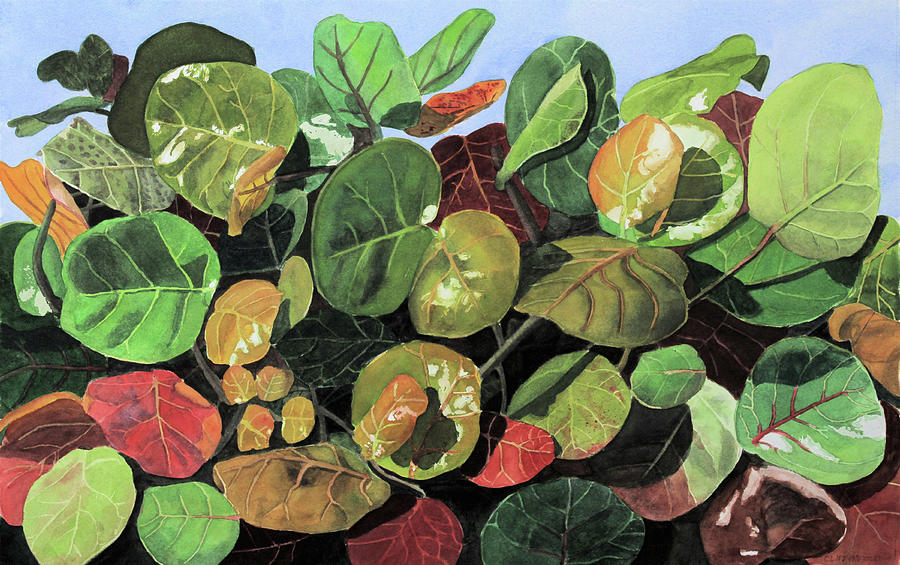 Plants Painting - Transformation of Color by Cory Clifford