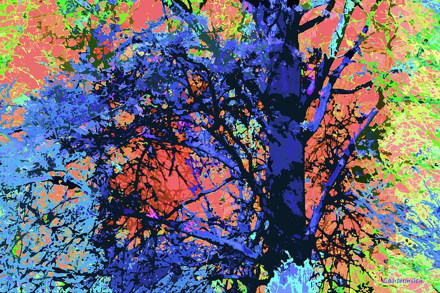Seasons Digital Art - Tree Enhanced by John Lautermilch
