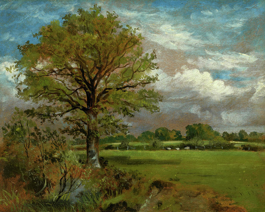 Constable Painting - Tree In A Meadow, 1850 by Lionel Bicknell Constable