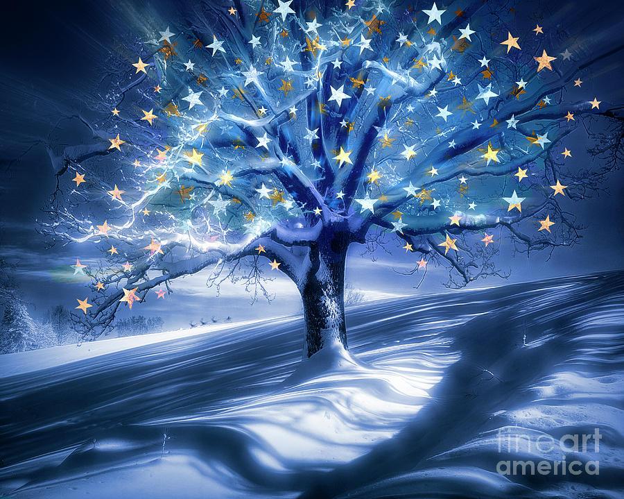 Tree of Secrets by Edmund Nagele