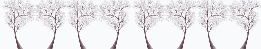 Trees Trees Trees Digital Art