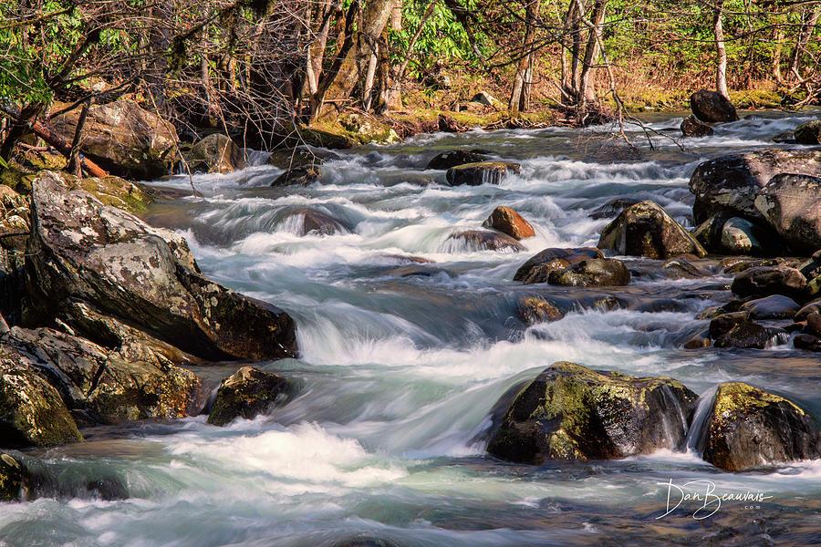 Tremont Cascade 8887 Photograph