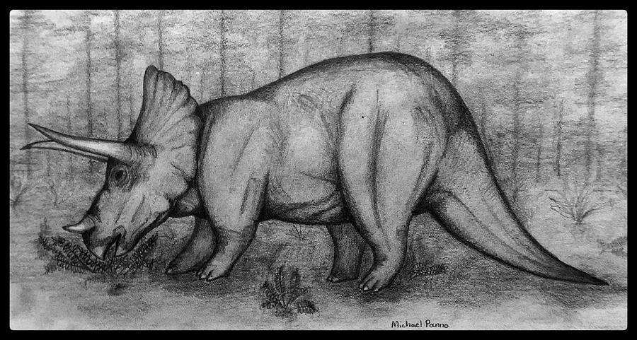 Triceratops W/ Border Drawing