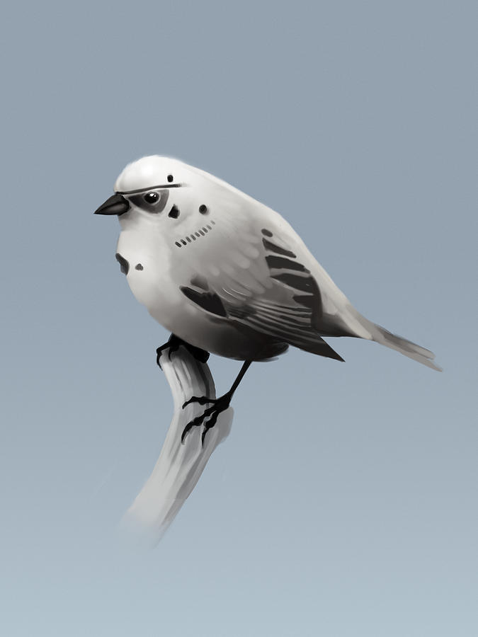 Birds Digital Art - Trooper Bird by Michael Myers