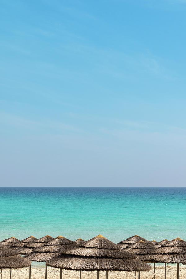 Tropical Blue Photograph
