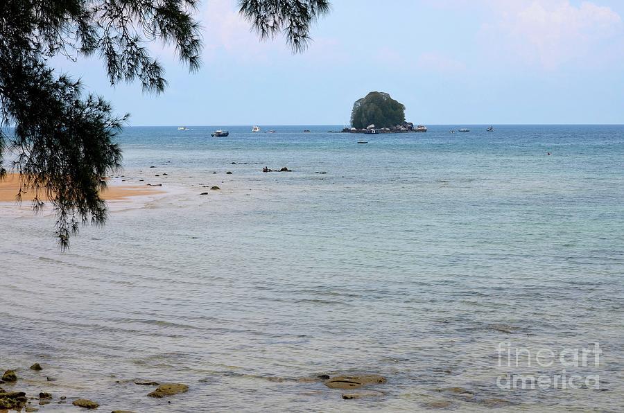 Tropical Kampong Tekek beach Tioman island Malaysia  by Imran Ahmed