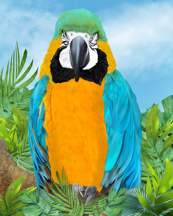 Tropical Parrot by Mark Taylor