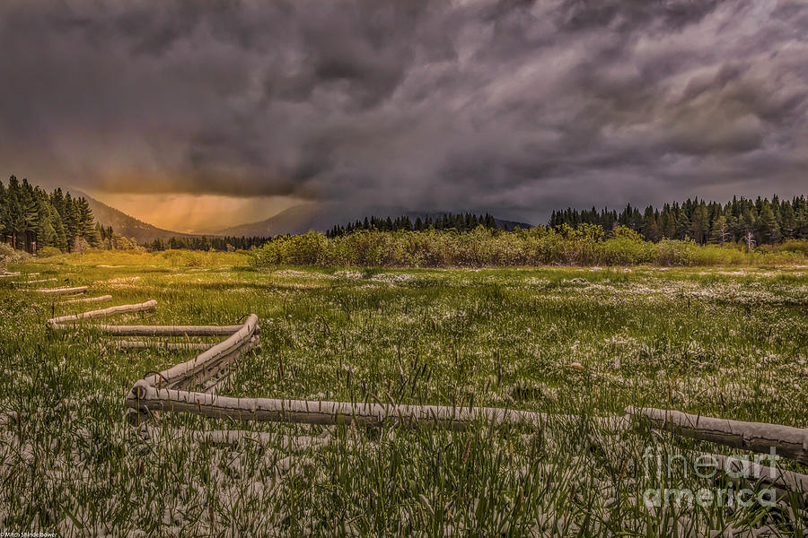 Trout Creek Meadow Spring Snow Photograph
