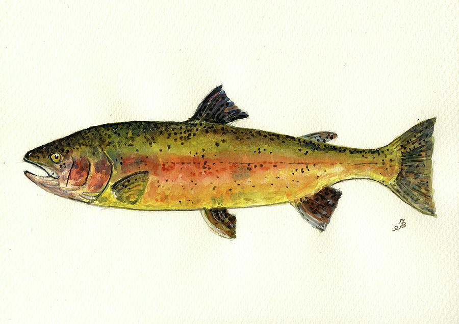 Trout Painting - Trout fish by Juan  Bosco
