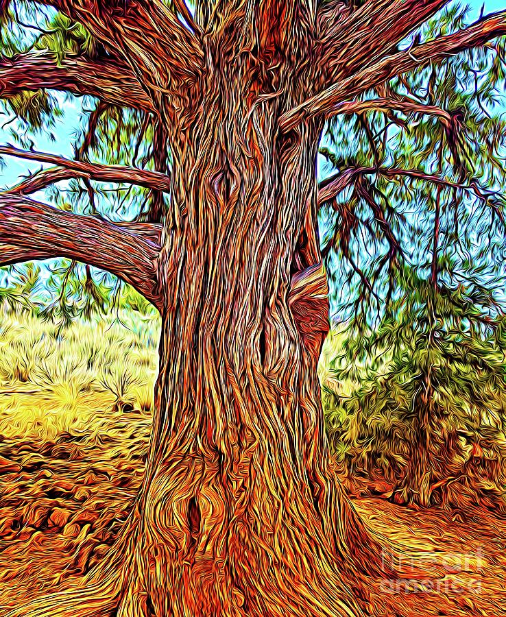 Trunk And Branches Digital Art