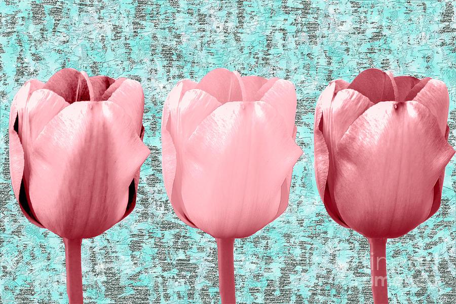 Tulip In Triplicate Mixed Media