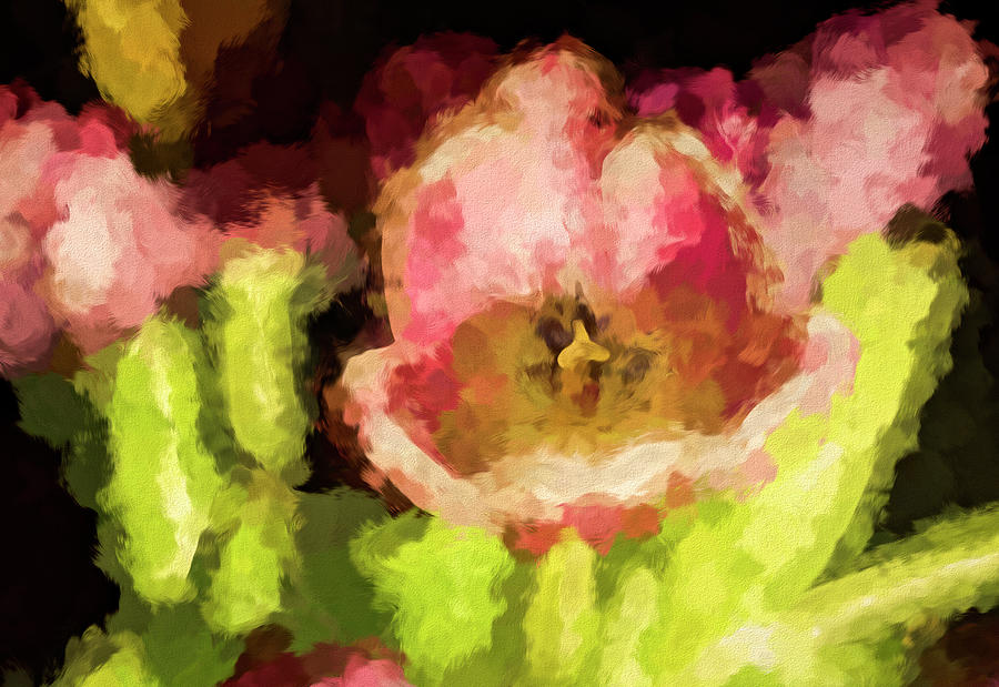 Tulips Abstract Photograph