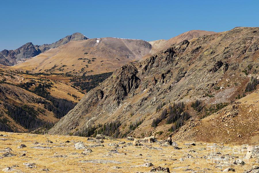 Tundra Field On Trail Ridge Road Colorado Photograph
