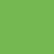 Turtle Green Digital Art
