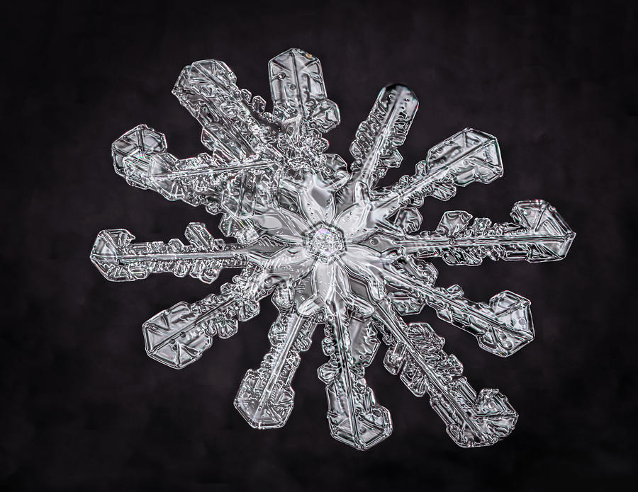Snowflake Photograph - Twelve Branched Snowflake by Brian Caldwell