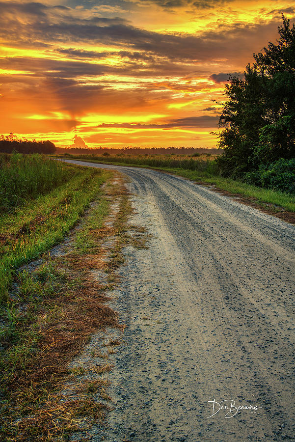 Twiford Road Sunrise 3112 Photograph