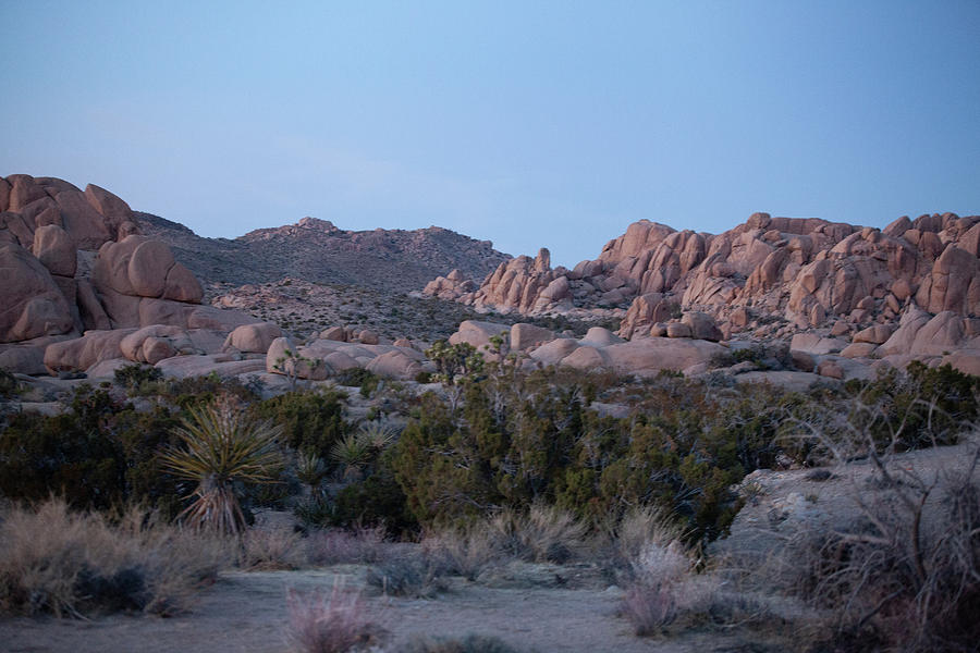 Desert Photograph - Twilight Zone by John Heywood