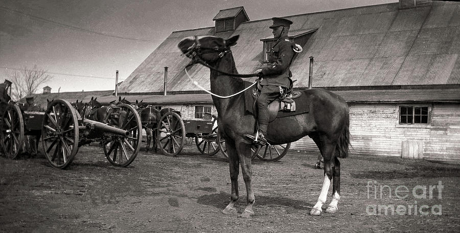 Two 18-pounders And Limbers - Royal Canadian Horse Artillery - About 1930 Photograph