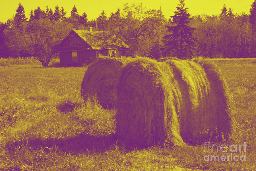 Nature Digital Art - Two Bales of Hay by Mary Mikawoz