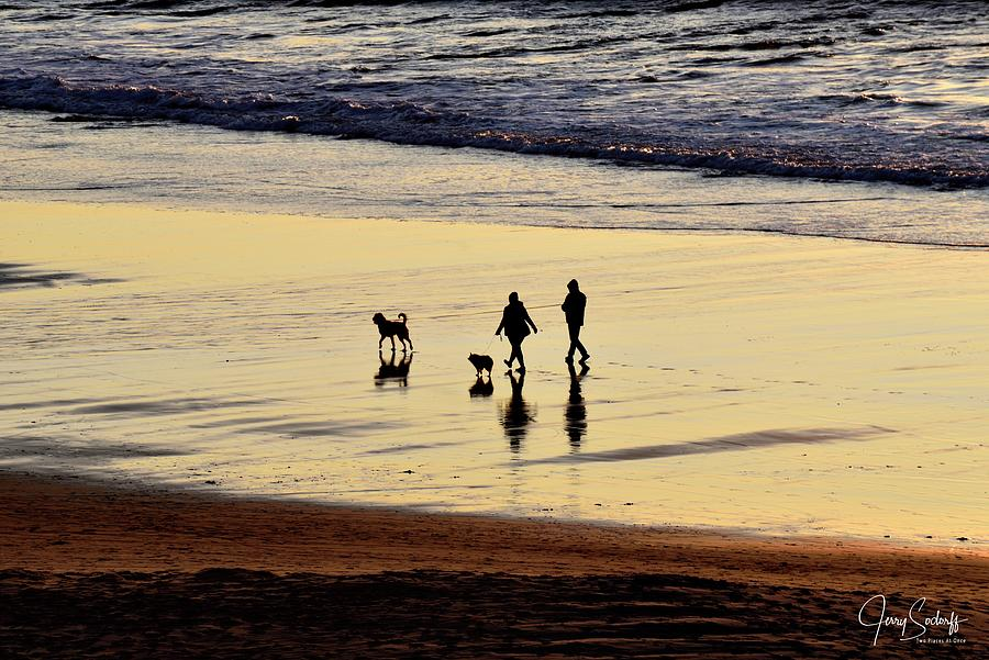 Two Dogs And Their Parents Walking Beach At Sunset by Jerry Sodorff