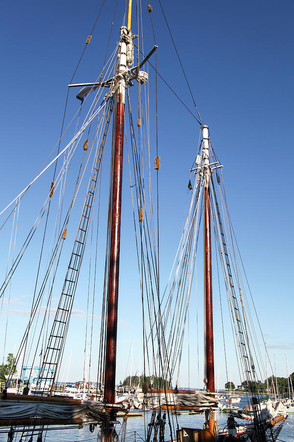 Two Masts Photograph