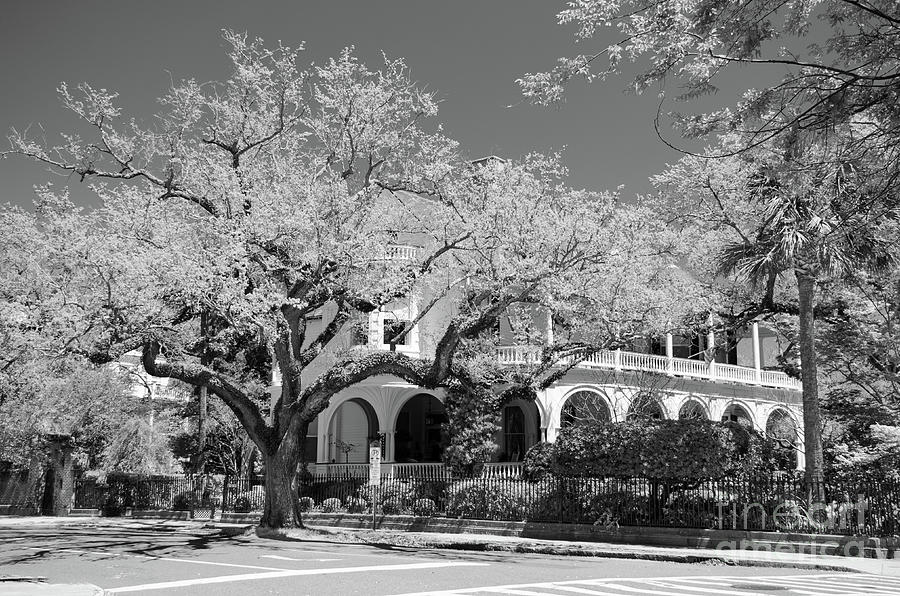 Two Meeting Street Inn Charleston - Infrared Photograph