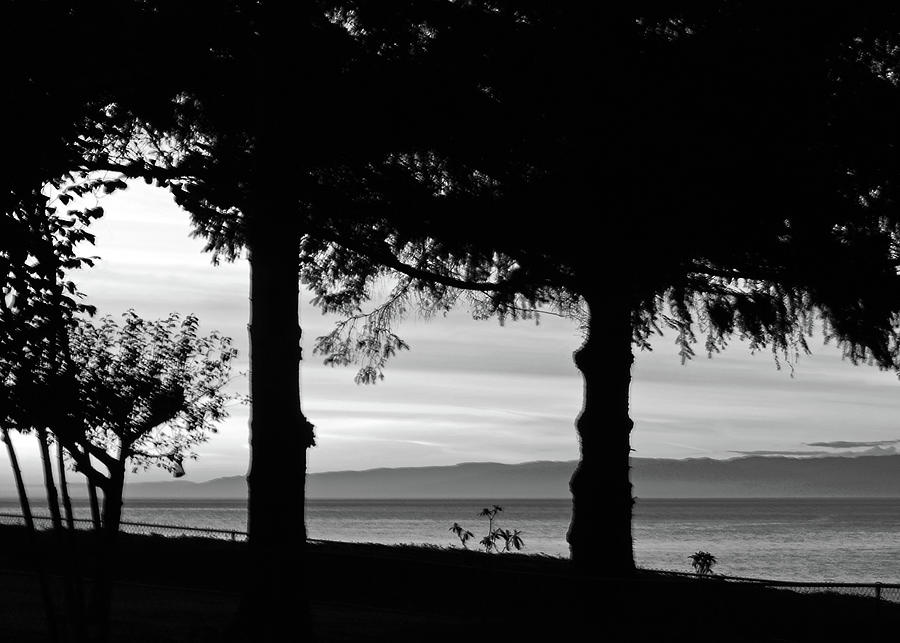 Two Nations In Bw Silhouette Photograph