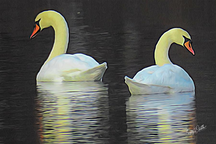 Two Swans swimming together. by Rusty R Smith