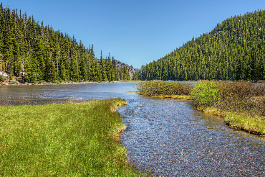 Tyee Creek 01095 by Kristina Rinell