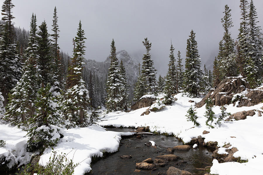 Tyndall Creek Spring Snow Photograph
