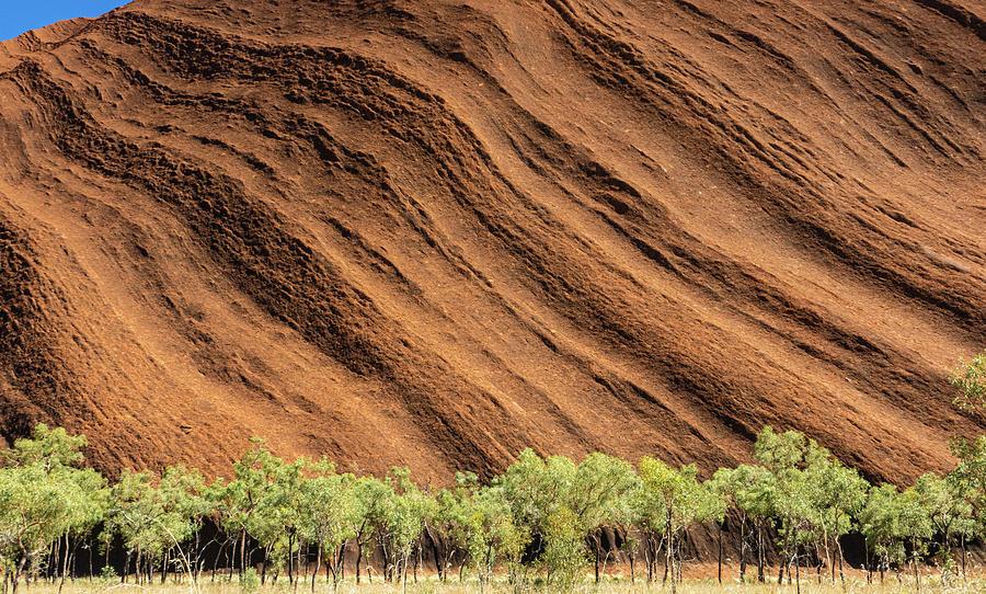 Uluru Photograph - Ulurus ancient textures  by Leigh Henningham