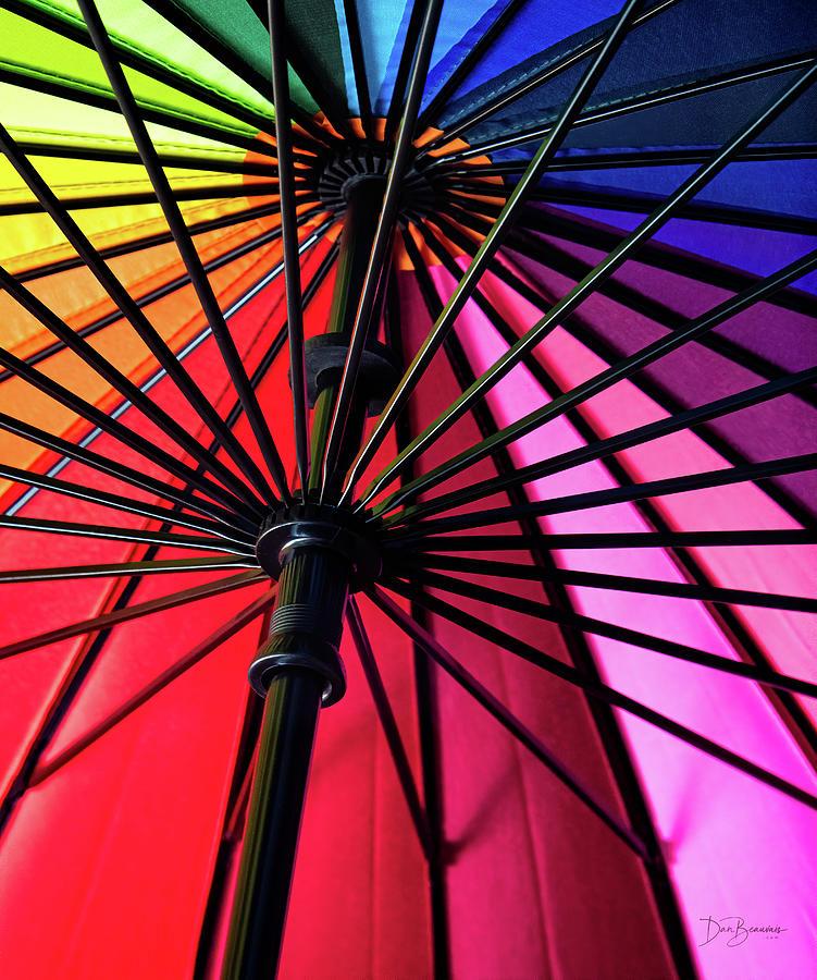 Umbrella 9793 Photograph
